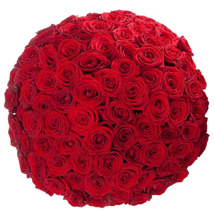 Розы Красные 101 шт
